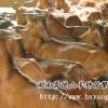 黄羊优价格供广东福建浙江四川重庆广东云南山羊养殖场