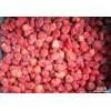 大量優質速凍冷凍草莓B級 2014廠家直供優質水果 遠銷國外