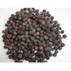 大量供应优质埃及黑胡椒