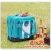 软体冰箱折叠式折叠式车载软体冰箱(猎趣Q006冷暖型)