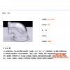 厂家直销 优质弯头 消防用玛钢管件镀锌管件 各种规格定做批发