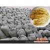安徽供应黄色盐渍金针菇