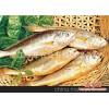 批发供应大黄鱼/海鲜批发/海产品/水产品/冰鲜鱼类