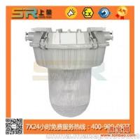 供应SR601/NFC9180防眩泛光灯