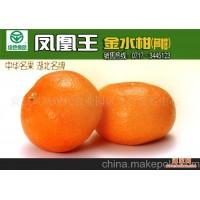 三峡特产-凤凰王芦柑-芦柑