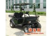 供应2座电动打猎车|休闲电动车|电动越野车|环保电动车|小型4轮电动车