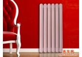 北京散热器 50铜铝散热器系列