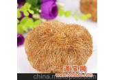 湖南猴头菇猴头菌批发优质嫩猴头