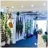 郑州地区提供主流的智能绿植墙代理
