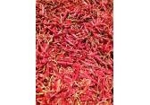 产地直供印度带把S17红辣椒
