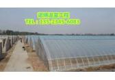 温室大棚一亩价格、郑州温室建设造价低