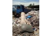 上海专业垃圾清理清运中心,上海环境卫生服务垃圾站