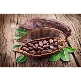上海咖啡豆报关公司