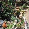 优质的重庆私家花园设计当属久意园林|南岸私家露台花园设计